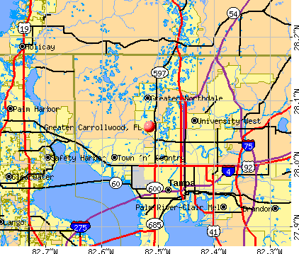 Greater Carrollwood, FL map