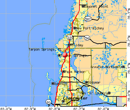 Tarpon Springs, FL map