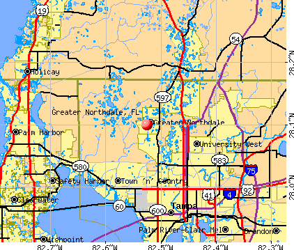Greater Northdale, FL map