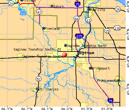Saginaw Township South, MI map