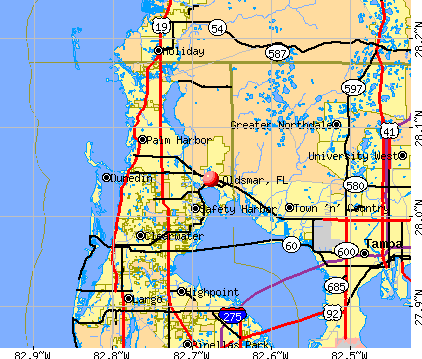 Oldsmar, FL map