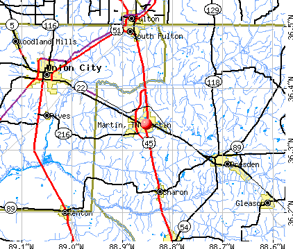 Martin, TN map