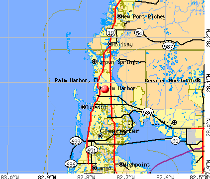 Palm Harbor, FL map