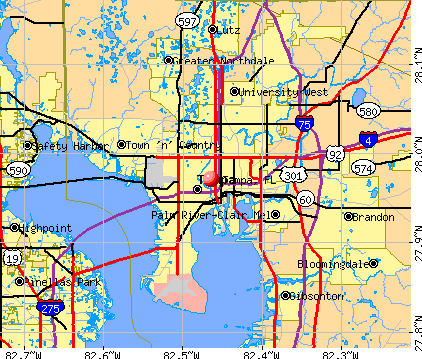 Tampa, FL map