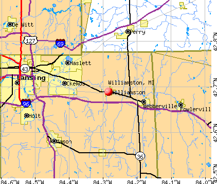 Williamston, MI map