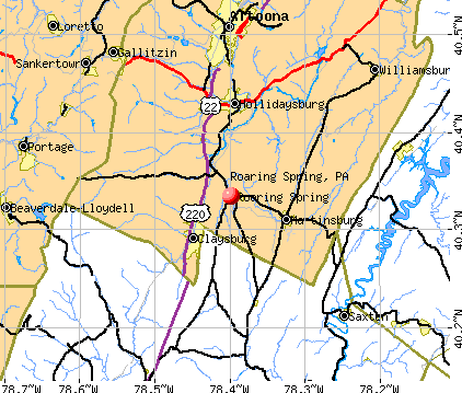 Roaring Spring, PA map
