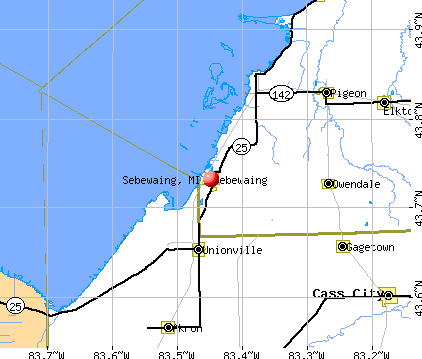 Sebewaing, MI map