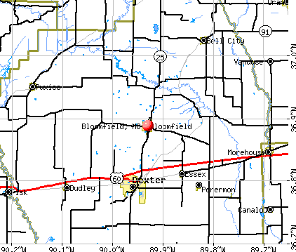 Bloomfield, MO map