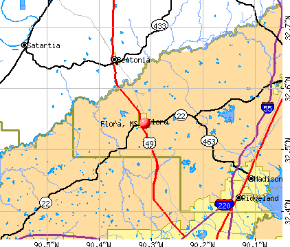 Flora, MS map