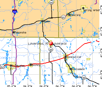 Litchfield, MI map
