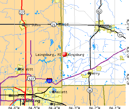 Laingsburg, MI map
