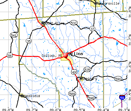 Collins, MS map