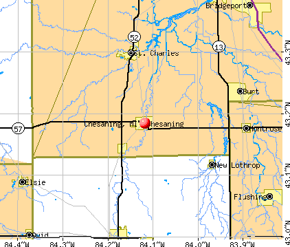 Chesaning, MI map