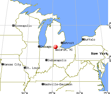 Waldron, Michigan map