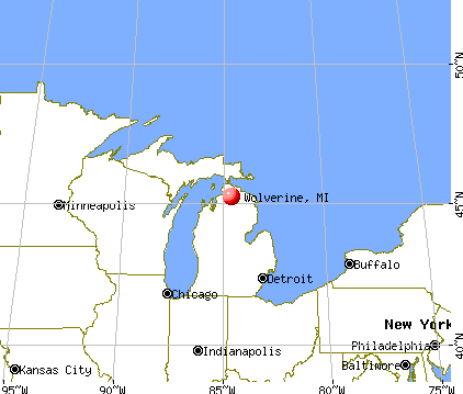 Wolverine, Michigan map