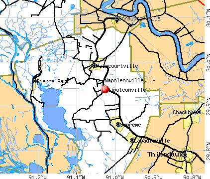 Napoleonville, LA map