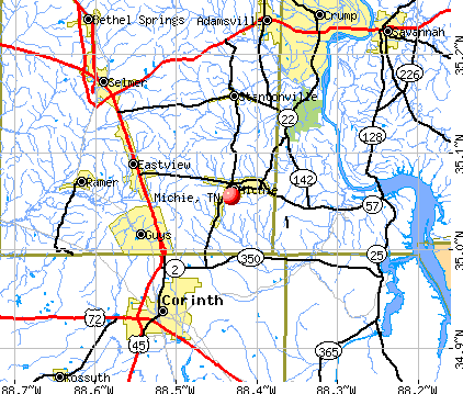 Michie, TN map