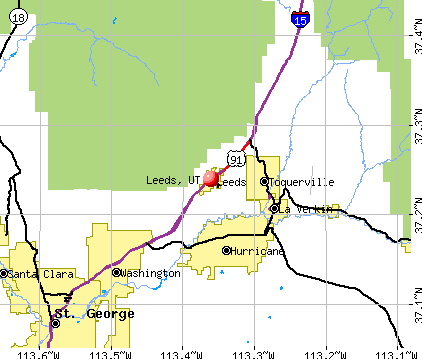 Leeds, UT map
