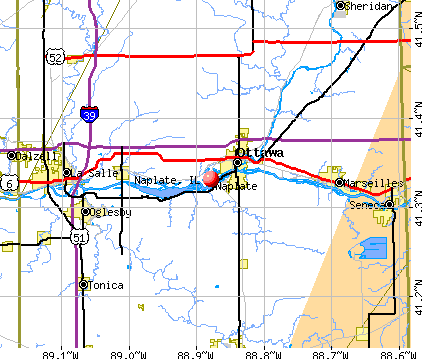 Naplate, IL map