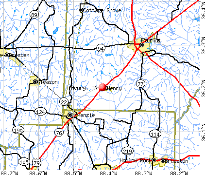 Henry, TN map