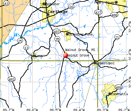 Walnut Grove, MS map