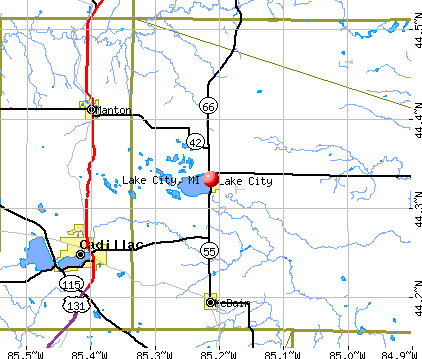 Lake City, MI map