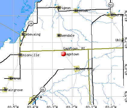 Gagetown, MI map