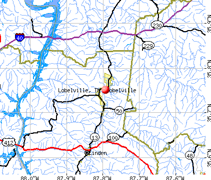 Lobelville, TN map