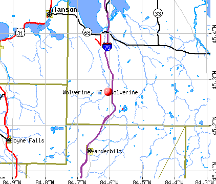 Wolverine, MI map