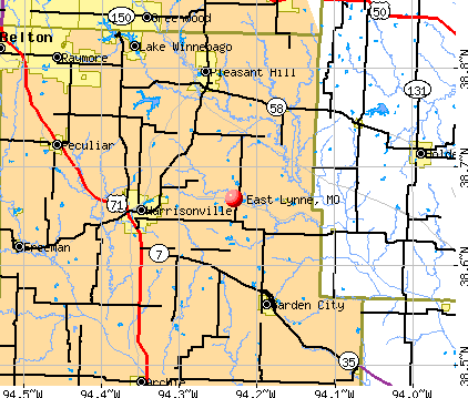 East Lynne, MO map