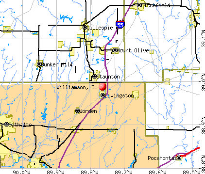 Williamson, IL map