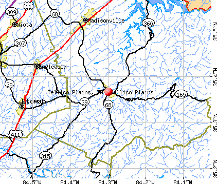 Tellico Plains, TN map