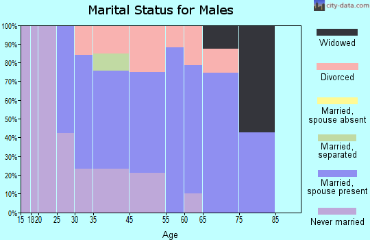 Vineyard Haven marital status for males