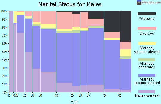 Battle Creek marital status for males