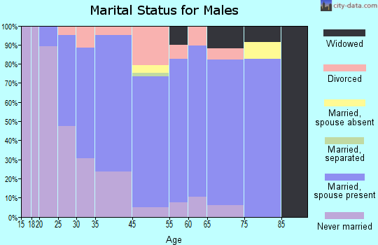 Elk Rapids marital status for males