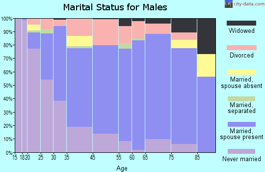 Escanaba marital status for males
