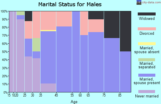 Springport marital status for males