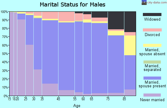 Sterling Heights marital status for males