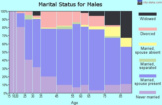 Fergus Falls marital status for males