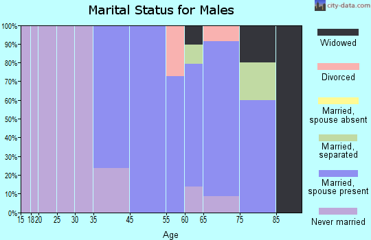 Harvey Cedars marital status for males