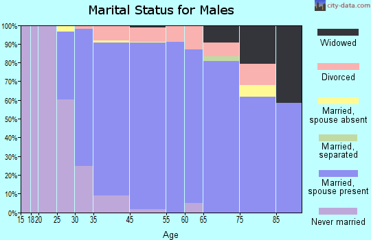 Lake Mohawk marital status for males