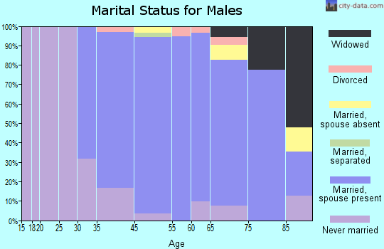 Saddle River marital status for males