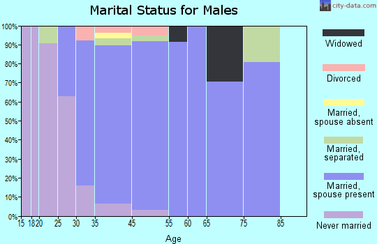Turnersville marital status for males