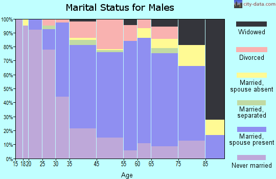 Amityville marital status for males