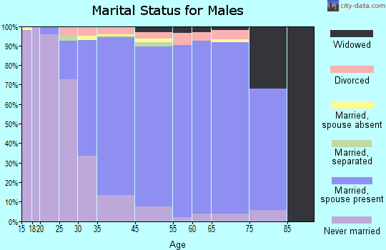 Baldwin Harbor marital status for males
