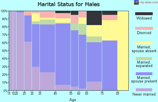 North Bellport marital status for males