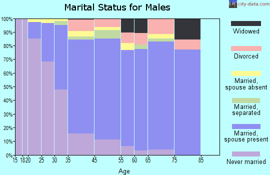 Port Jefferson Station marital status for males