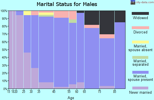 South Valley Stream marital status for males