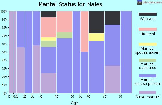 Brookford marital status for males