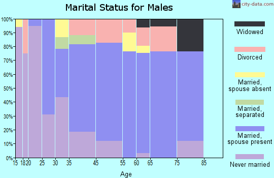 Surf City marital status for males
